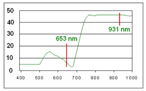 Изображение №2 - N-тестер-нитратомер CCM-200 plus - Элтемикс Агро