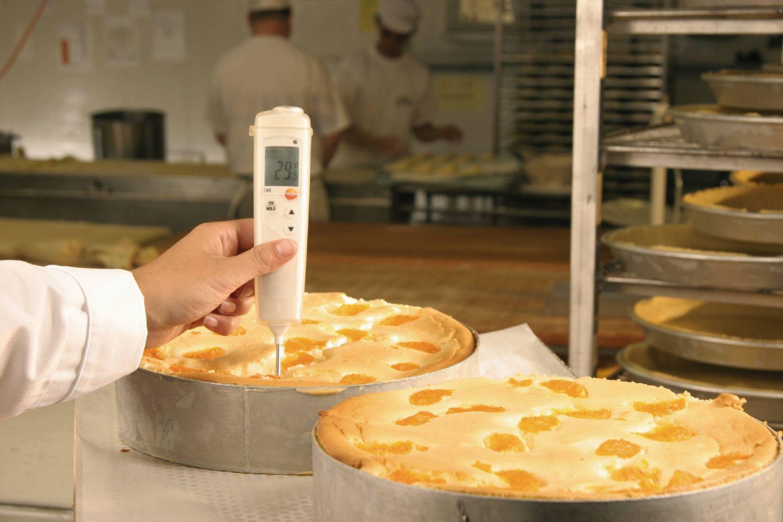 Изображение №1 - Пищевой термометр testo 106 - Элтемикс Агро