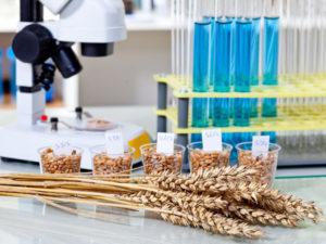 Изображение №1 - Методы определения белка в зерне и необходимое оборудование - Элтемикс Агро