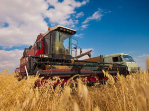 Изображение №1 - 11 октября - День работника сельского хозяйства и перерабатывающей промышленности - Элтемикс Агро